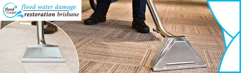 Professional Carpet Cleaning Brisbane
