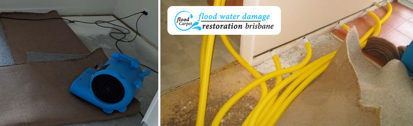 Carpet Flood Recovery Service