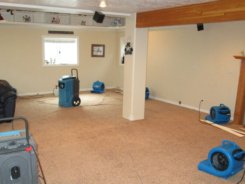 Emergency Carpet Water Damage Restoration