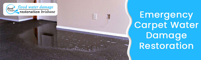 Emergency Carpet Water Damage Restoration Brisbane