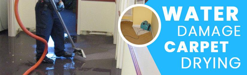 Water Damage Carpet Drying Brisbane